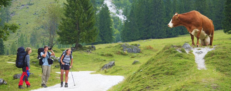 Großartige Panoramen in den Berge ermöglichen den Genuss der Natur